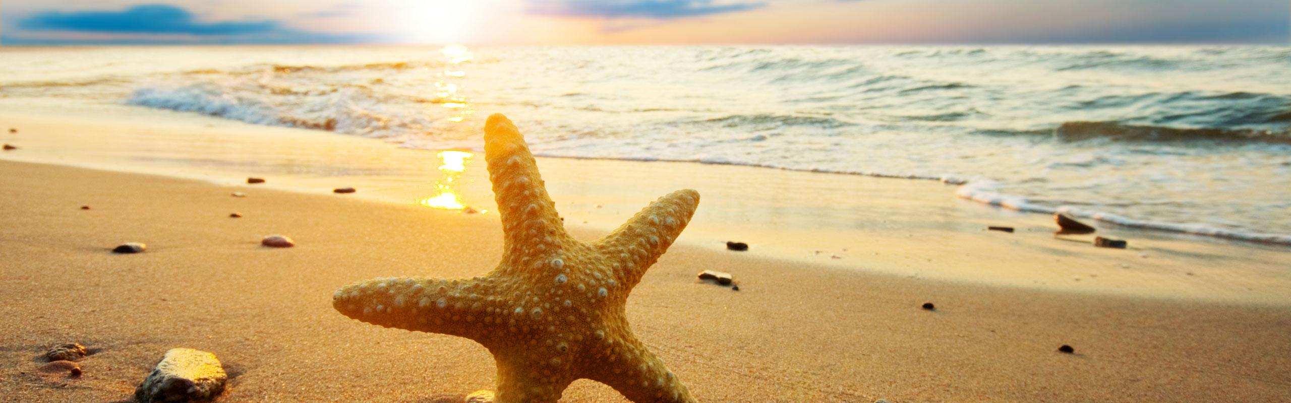 Ein tolles Programm hat FTI für den Urlaubssommer 2020 zusammen gestellt.